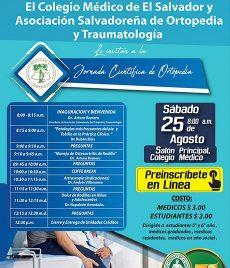2018-08-25 – Jornada de Ortopedia